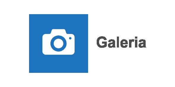 Galeria lata 2009-2017